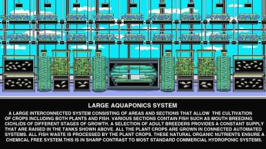 Aquaponics upper and lower