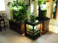 Terrarium and aquariums