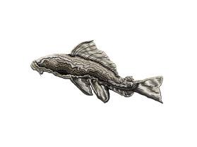 Catfish - Plecostomus