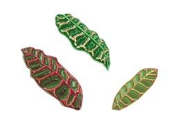 Croton Leaf detail